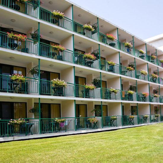 hotel trakia suncev breg, hotel trakia suncev breg early booking, hotel trakia suncev breg first minute, hotel trakia suncev breg popusti