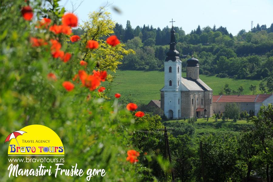 fruškogorski manastiri, manastiri fruške gore, fruska gora manastiri, manastiri fruske gore, manastiri fruske gore izlet